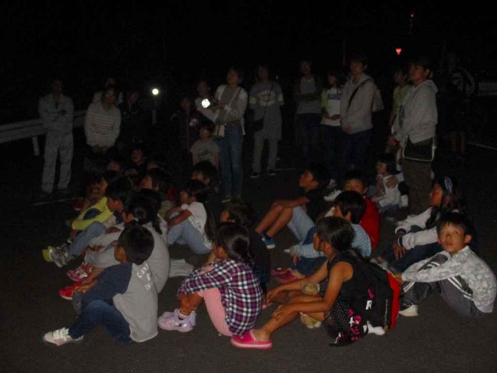 hotarudayo-2.png