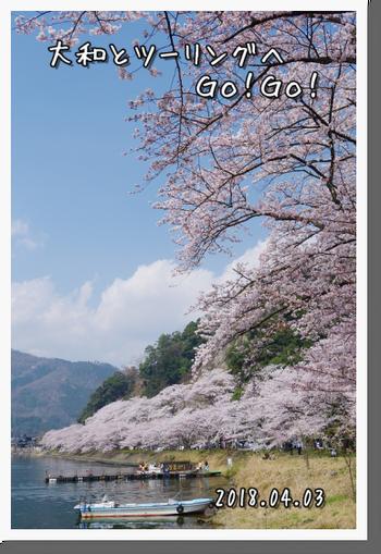 2018年4月3日 岐阜・滋賀の桜ツーリング (27)