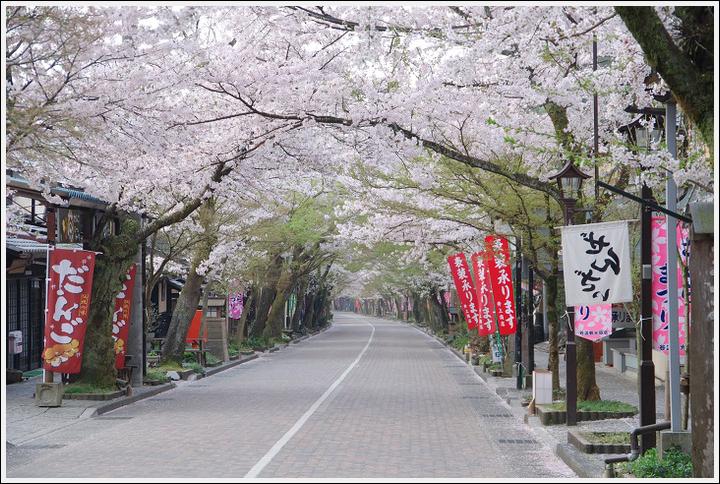 2018年4月3日 岐阜・滋賀の桜ツーリング (5)