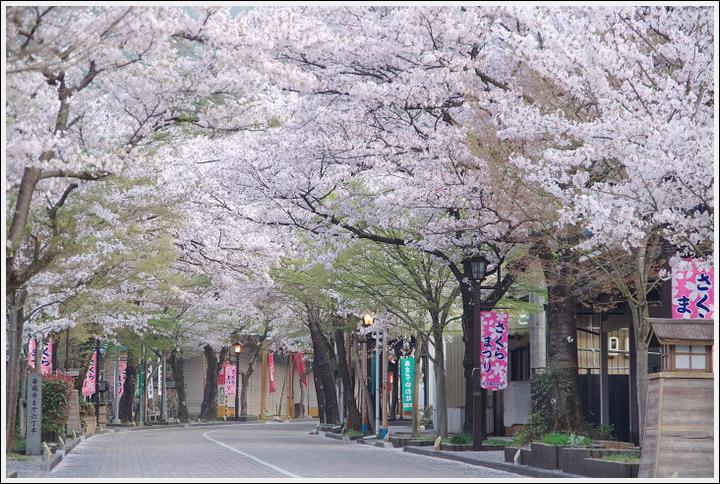 2018年4月3日 岐阜・滋賀の桜ツーリング (2)