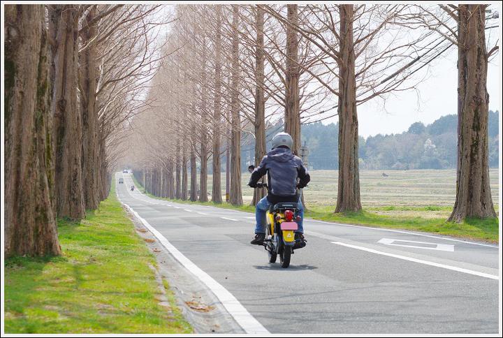 2018年4月3日 岐阜・滋賀の桜ツーリング (17)