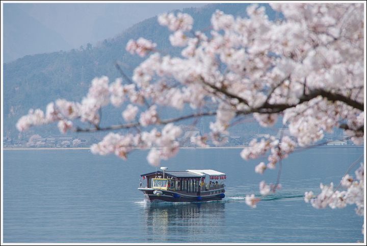 2018年4月3日 岐阜・滋賀の桜ツーリング (20)