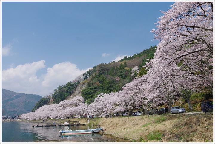 2018年4月3日 岐阜・滋賀の桜ツーリング (23)
