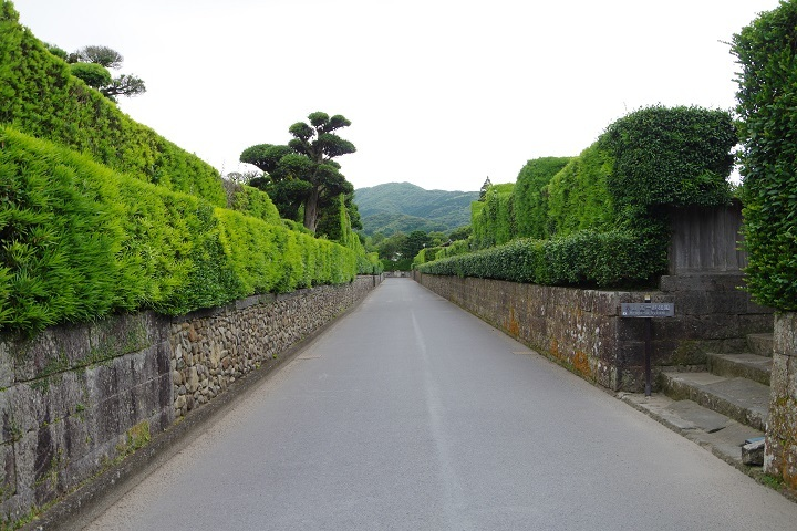 2018年6月18~19日 鹿児島旅行 (5)