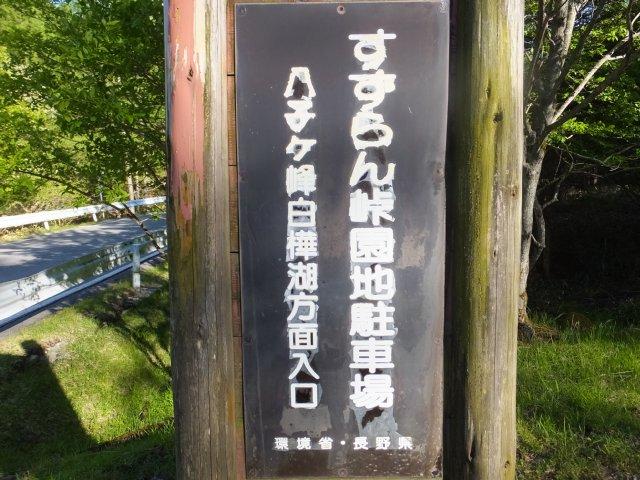 八子ヶ峰 2018.6.1 110
