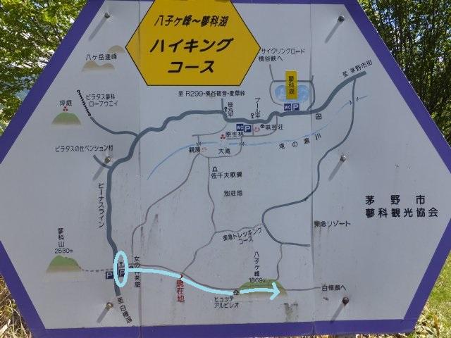 八子ヶ峰 2018.6.1 014