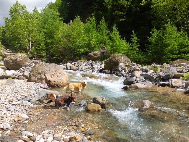 八ヶ岳渓流ロッカ&リュック2018.7.2 003