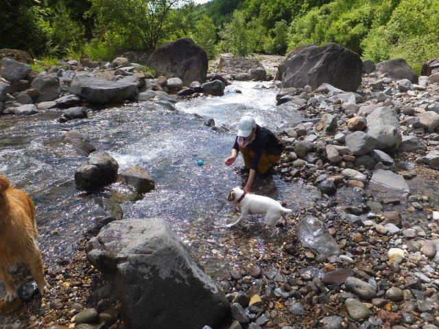 八ヶ岳渓流ロッカ&リュック2018.7.2 012