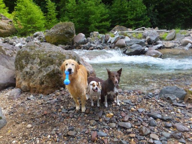 八ヶ岳渓流ロッカ&リュック2018.7.2 021