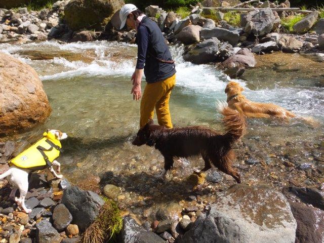 八ヶ岳渓流ロッカ&リュック2018.7.2 041