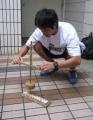 yjimageU1D686J02009.jpg