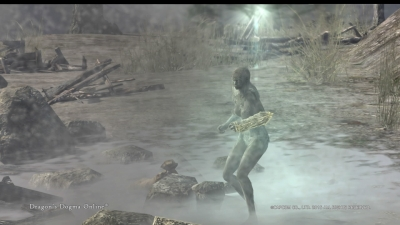 Dragons Dogma Online__183