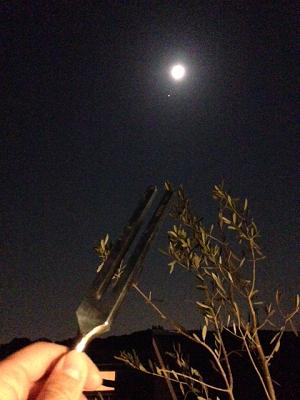 さそり座満月2