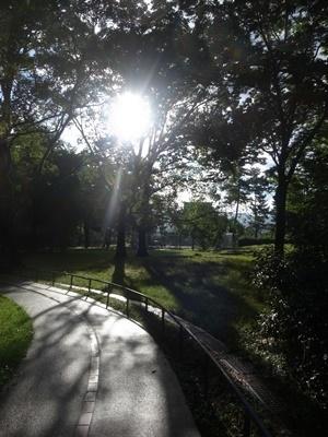 団地の公園の朝日1807