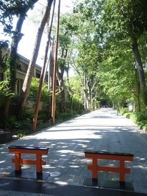 下鴨神社糺の森車止め1807