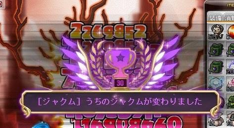 Maple_17340a.jpg