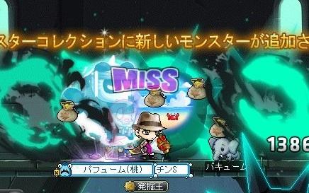Maple_17351a.jpg