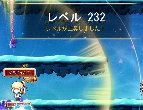 Maple_17486a.jpg