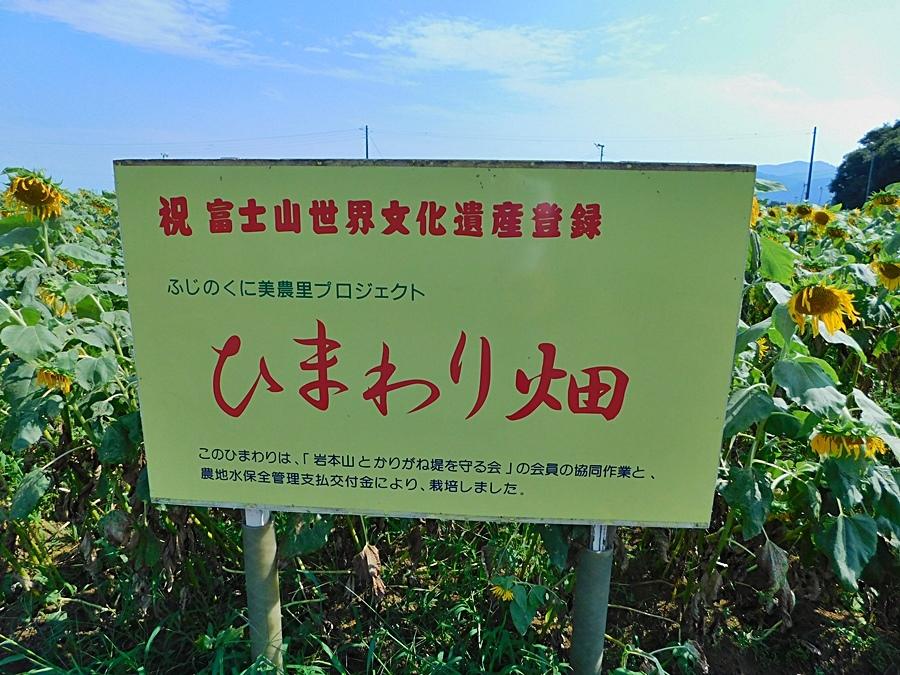 iwamotmoyama-20180727-03.jpg