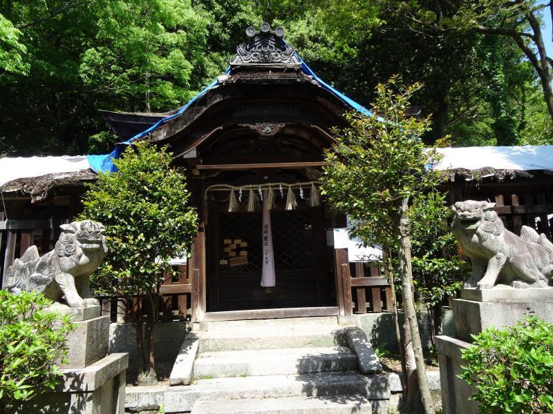 蝉丸神社13