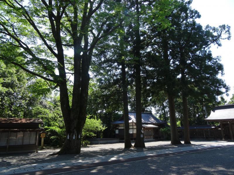 雄山神社7