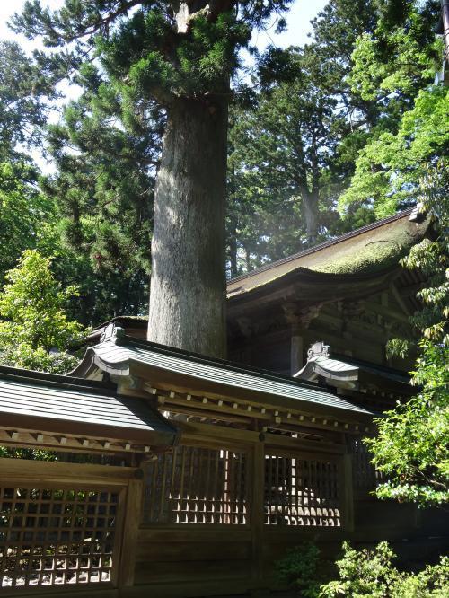 雄山神社9