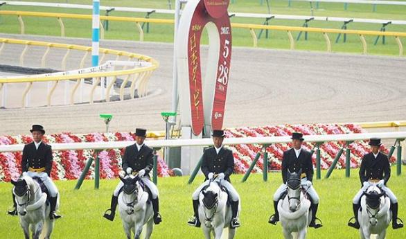 201805211manbaken-horse