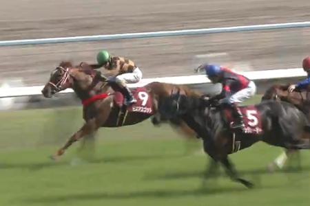 20180602manbaken-horse