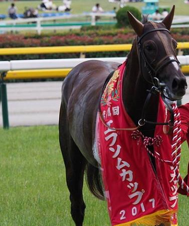 20180606manbaken-horse