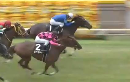 20180610manbaken-horse