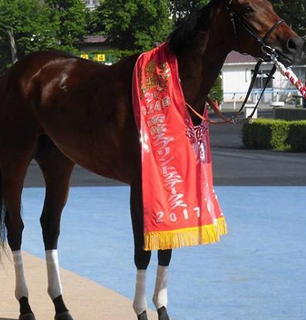 20180612manbaken-horse