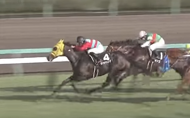 20180617manbaken-horse