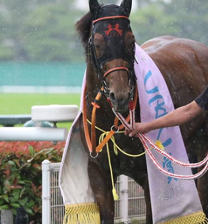 20180626manbaken-horse
