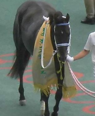 20180705manbaken-horse