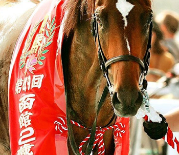 20180717manbaken-horse