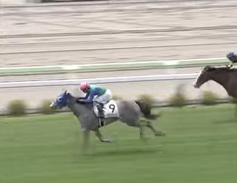 20180721manbaken-horse