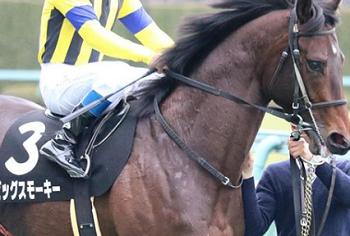 20180804manbaken-horse