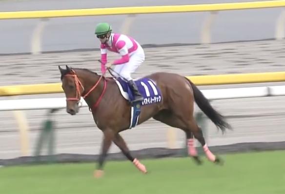 manbaken-horse20180507a