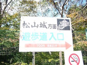 takahashi14.jpg