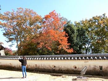 takahashi35.jpg