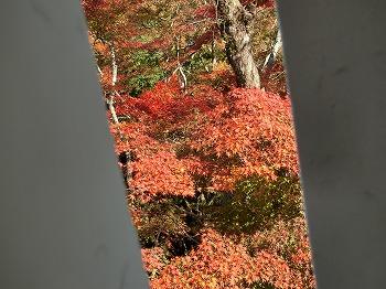 takahashi47.jpg