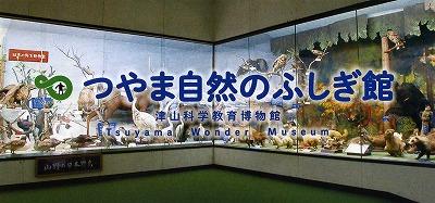tsuyama133.jpg