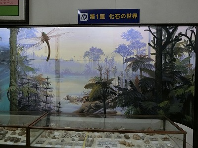 tsuyama144.jpg