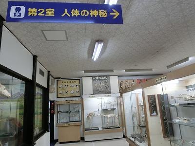 tsuyama146.jpg