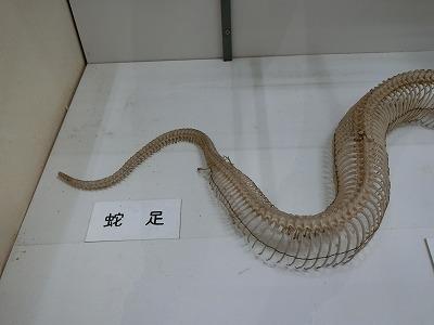 tsuyama149.jpg