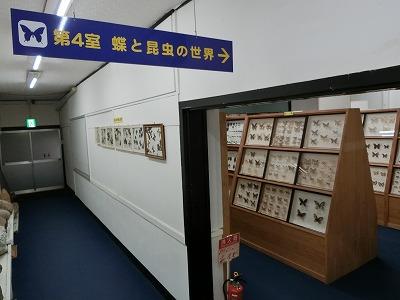 tsuyama152.jpg