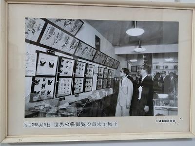tsuyama159.jpg