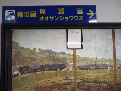 tsuyama197.jpg