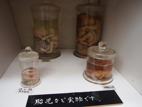 tsuyama219.jpg