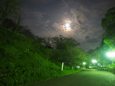 tsuyama89.jpg